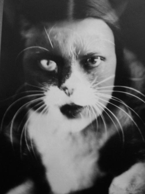Wanda Wulz, Io+gatto, 1932